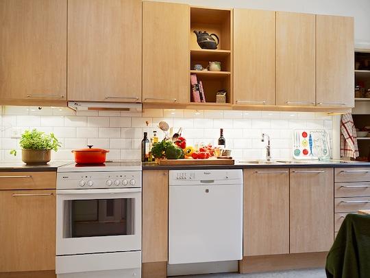 white birch - Birch Kitchen Cabinets